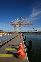Dockside view of 4 cranes, Southampton
